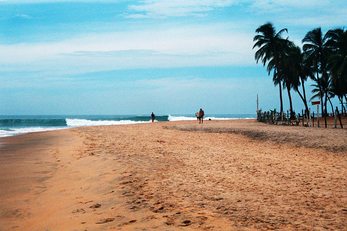 surfers walking up the palm fringed beach at arugam bay in sri lanka