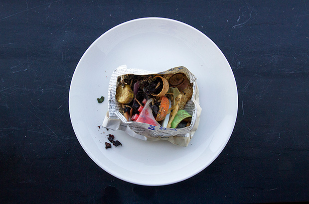 bolus - the stomach contents of a baby albatross - full of plastic litter