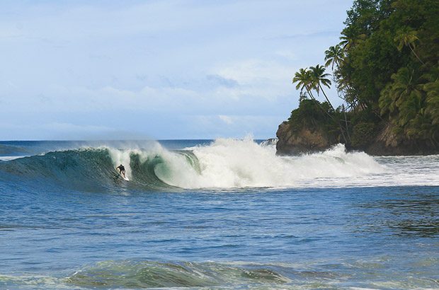 surfing a right hand wave beneath palm trees in the carribbean