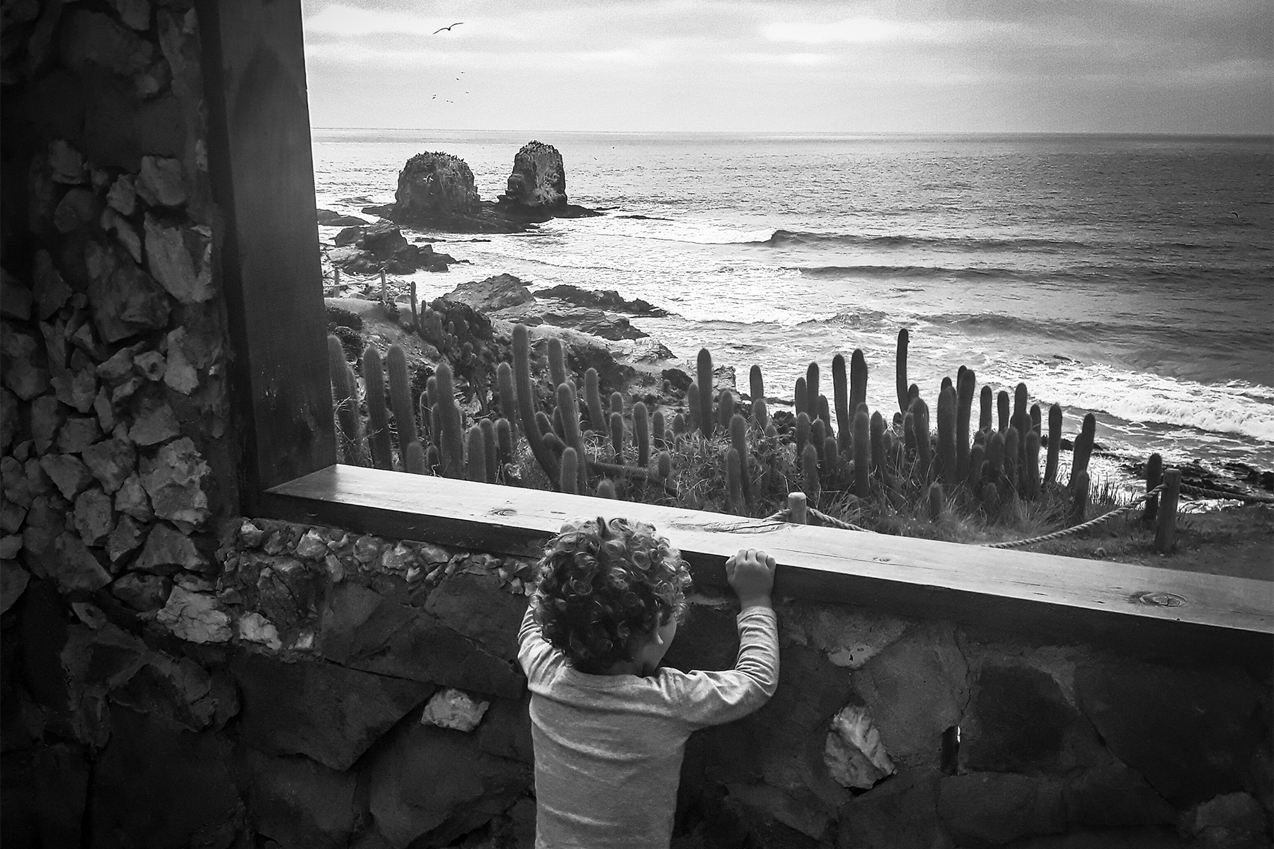 a child looking over a wall at a breaking wave at punta de lobos, by Philip Souther